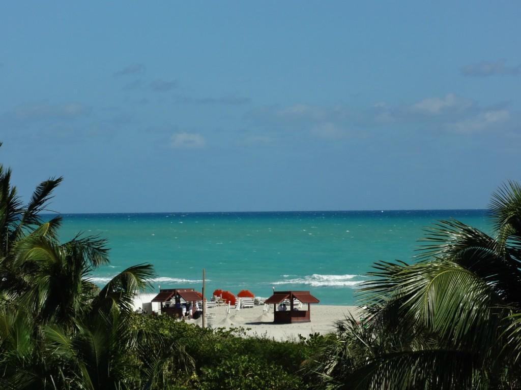 seagull miami beach