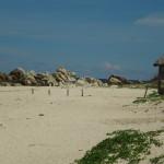 Наши фото и отзывы об отдыхе во Вьетнаме 18