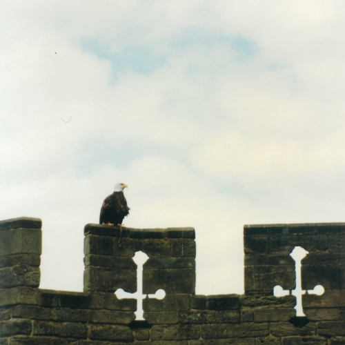 Замок в городе Уорвик (Warwick), фотографии Англии