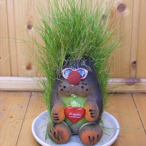 У нас живет травянчик Крот. Сказка для детей.