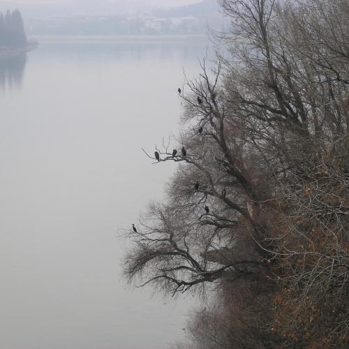 7 дней в Будапеште. День 2. Прогулка на обум (куда глаза глядят).