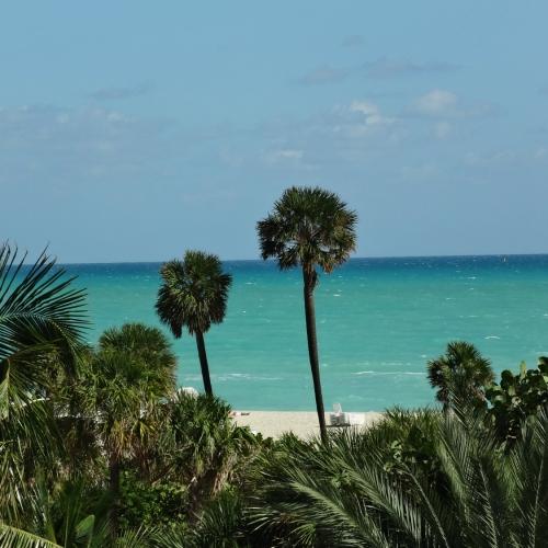 Фото нашего номера в отеле Seagull Miami Beach