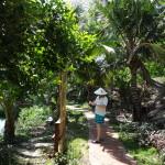 Наши фото и отзывы об отдыхе во Вьетнаме 2