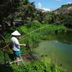 Наши фото и отзывы об отдыхе во Вьетнаме 4