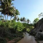 Наши отзывы и фото из Вьетнама 48
