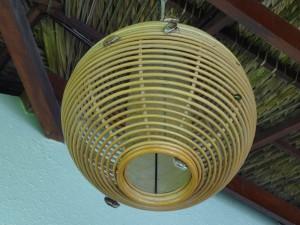 Ночью, когда на веранде горит свет, на него слетаются вьетнамские майские (я их так прозвал) жуки, и утром весь светильник облеплен ими