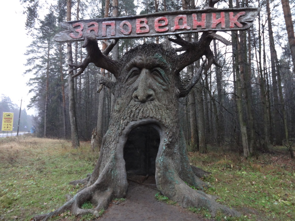 заповедник, дерево, дерево фото, резьба по дереву, древнее дерево, дупло, дупло в дереве, большое дупло, сказочный персонаж, сказочное дерево, пень, старый пень, указатель, вывеска